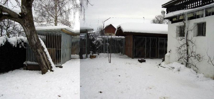 Zwingeranlage im Garten a 5 Stk. und 3 Stk. in der Garage